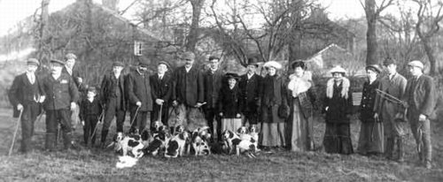 St Bees Beagle pack