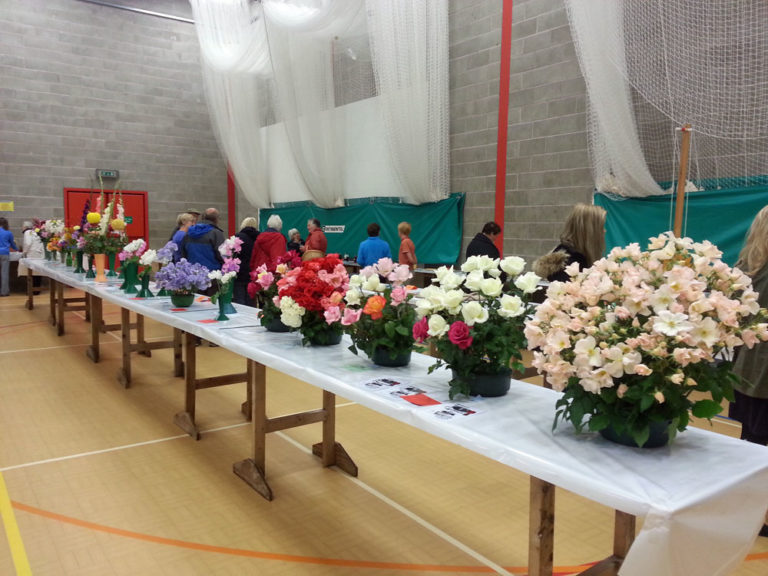 St Bees Flower Show