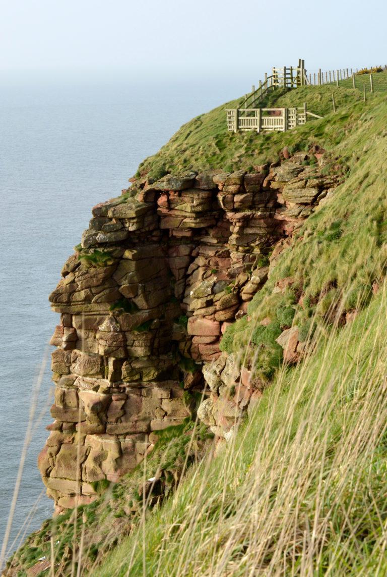 St Bees RSPB Cliff nesting site